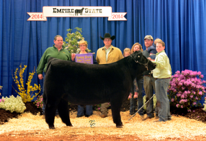 14-Champion-Steer—Empire-State-Beef-Classic—Nathan-Hoelscher