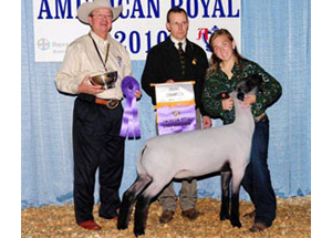 10-american-royal-champ-amanda-raute