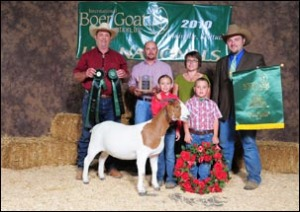 10-champ-overall-international-boer-goat-junior-national-show