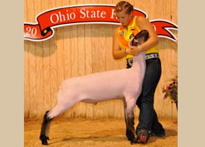 10-champ-shrop-ohio-state-fair