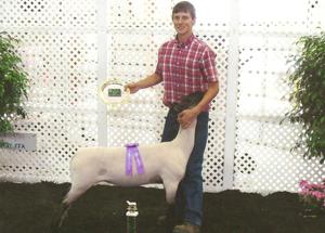 10-eli-davidson-grand-champ-mkt-lamb