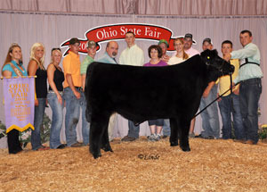 10-res-champ-steer-ohio-state-fair