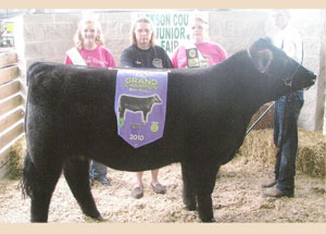 10-supreme-heifer-jackson-county-fair
