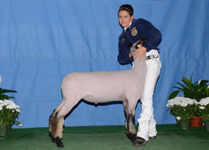 11-FFA-Reserve-Champion-Hampshire-california-state-fair
