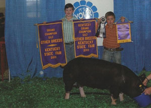11-champ-berk-gilt-kentuckystatefair