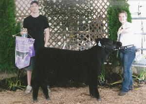 11-champ-feeder-calf-warrenco