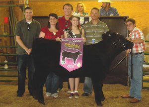 11-champ-feeder-steer-cabellco