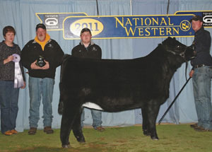 11-champ-purebred-simmi-heifer-calf-nwss-jeff-hall