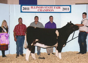 11-champ-shorthorn-heifer-illinois-state-fair-johnson-family