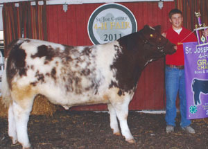 11-grand-champ-born&bred-steer-st-joseph-co-jacob-phelps