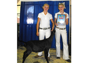 11-grand-champ-dairy-wether-indiana-state-fair