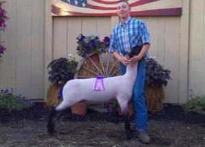 11-grand-champ-lamb-ottawa-county-fair