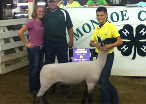 11-grand-champ-mrk-lamb-monroe-co-ethan-vencel