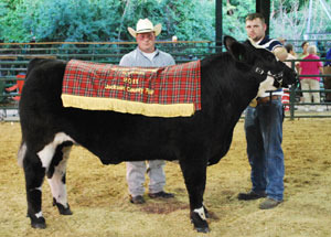 11-grand-champ-steer-jackson-co-garrett-sattler