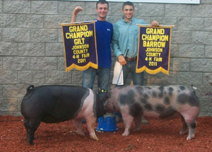 11-grand-champion-gilt-johnson-county-4-h-fair