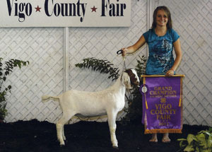 11-grand-champion-market-goat-vigo-co-fair