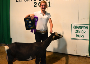 11-grand-milking-doe-laporte-county-bailee-cook
