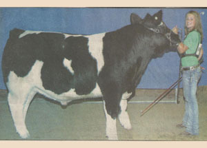 11-grand-steer-winneshiek-co-elizabeth-smith