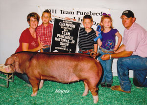 11-res-champ-hereford-gilt-team-purebred-nat-jr-show-hayden-miller