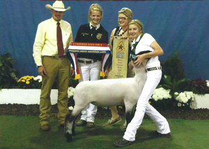 11-res-champ-mrk-lamb-california-state-fair