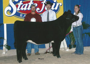 11-res-commercial-heifer-ncstatefair