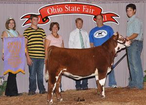 11-res-prospect-heifer-heifer