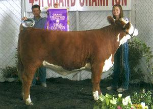 11-supreme-heifer-4h-vigo