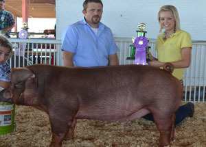12-champion-duroc-barrow-ffa-section-9-fair-christine-todd-edited