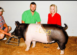 12-class-winner-13-out-of-25-shows-cristine-todd-icpa-circuit-shows