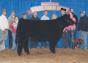 12-grand-champ-aob-market-steer-pa-farm-show-paige-stahl