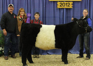 12-grand-champ-belted-galloway-steer-naile-allie-abney