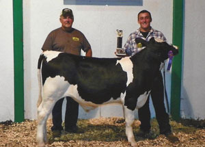 12-grand-champ-dair-calf-huron-county-jeremiah-adams