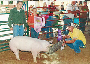 12-grand-champ-gilt-jackson-county-jada-baker