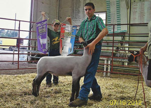 12-grand-champ-market-lamb-carroll-county-travis-johnson