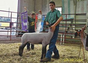 12-grand-champ-market-lamb-carroll-county-travis-johnson