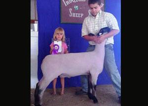 12-grand-champ-market-lamb-iroquois-county-dalton-hensler