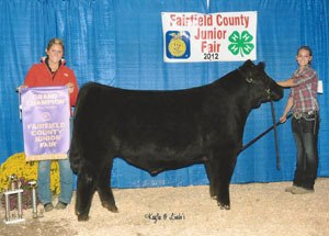12-grand-champ-market-steer-fairfield-county-cayla-goodman