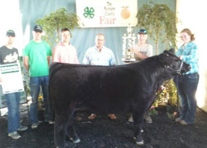12-grand-champ-market-steer-putnam-county-chelsea-warnimont