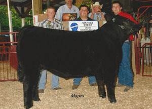 12-grand-champ-market-steer-union-county-dustin-kuhlwein