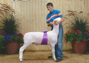 12-grand-champ-montadale-supreme-champ-breeding-ewe-grand-champ-bornandraised-market-lamb-huron-county-brock-martin