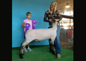 12-grand-champ-premier-wether-illinois-state-fair-shelby-deornellas