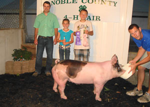 12-grand-champion-carcass-barrow-noble-county-fair-konner-kirkpatrick