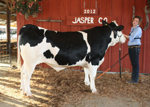 12-grand-champion-dairy-steer-champion-rate-of-gain-jasper-county-fair-savannah-steinke