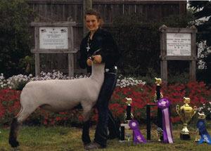 12-grand-champion-market-lamb-kent-county-fair