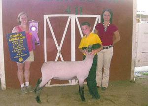 12-grand-champion-market-lamb-st-clair-county-fair-tyler-eldridge