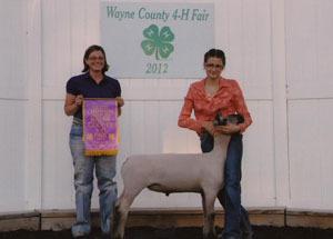 12-grand-champion-market-lamb-wayne-county-fair-brooke-bowen