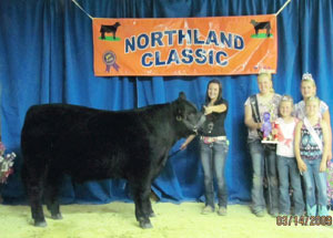 12-grand-champion–market-steer-northland-classic-and-big-4-fair-chelsea-bullerman