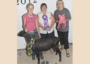 12-grand-champion-senior-dair-doe-laporte-county-fair-dakota-mae-cook