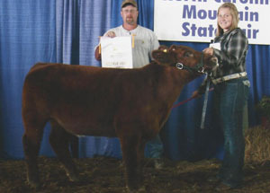 12-res-grand-champ-feeder-calf-NC-mountain-state-kelsi-carwright