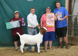 12-reserve-grand-champion-doe-clark-county-david-abbott
